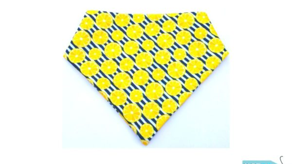 Hazel & Co Lemoney Bandana for Dogs
