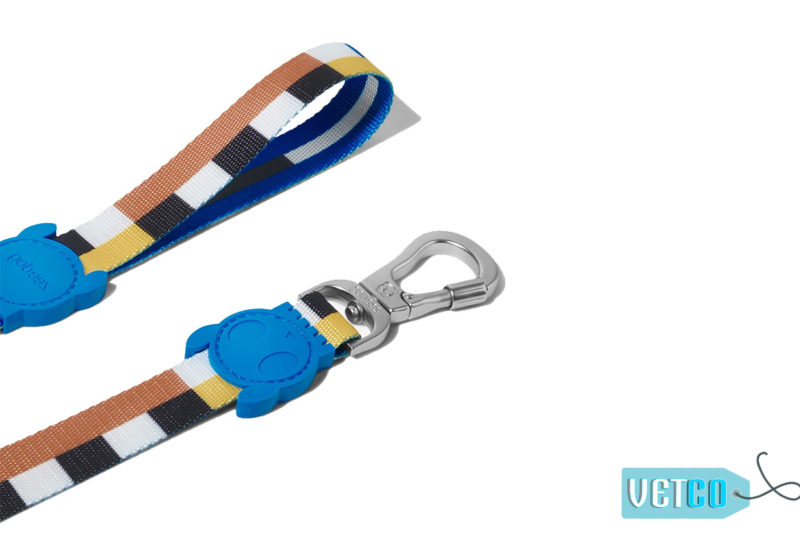 ZeeDog Blocks Dog Leash