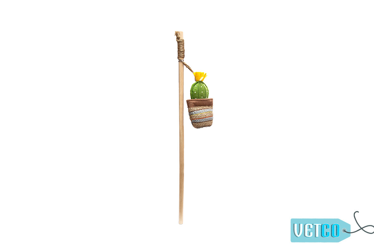 FOFOS Cactus Wand Catnip Cat Toy