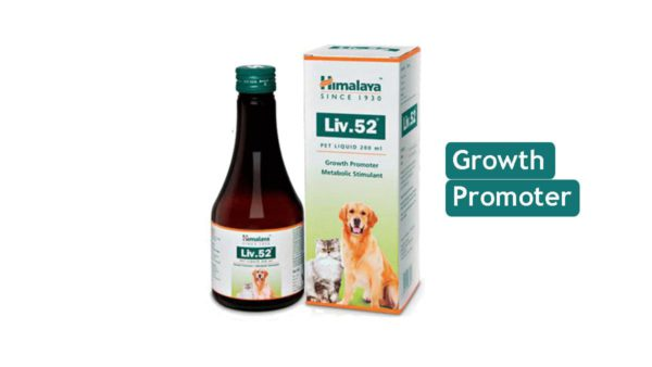 Himalaya Liv.52 Liver Support Supplement for Pets, 200 ml (Pack of 2)