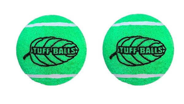 Petsport Regular Mint Tuff Ball Dog Toy 2 Pack