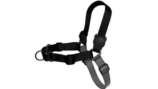 Zee.Dog Gotham Soft-Walk Dog Harness