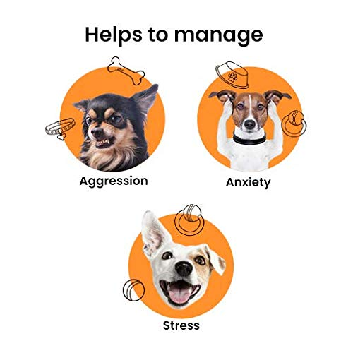 Bark Out Loud Calming & Anxiety Supplement for Dogs (5 Sachets)