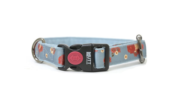 Mutt Ofcourse Pawesome Blossom Dog Collar
