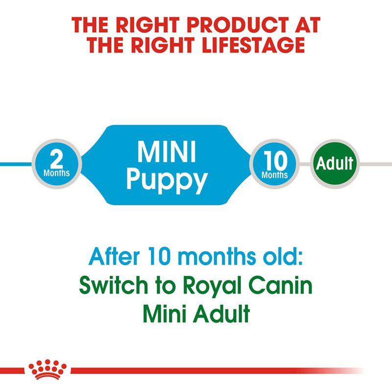 Royal Canin Mini Puppy Dry Dog Food (Mini & Small Breeds)